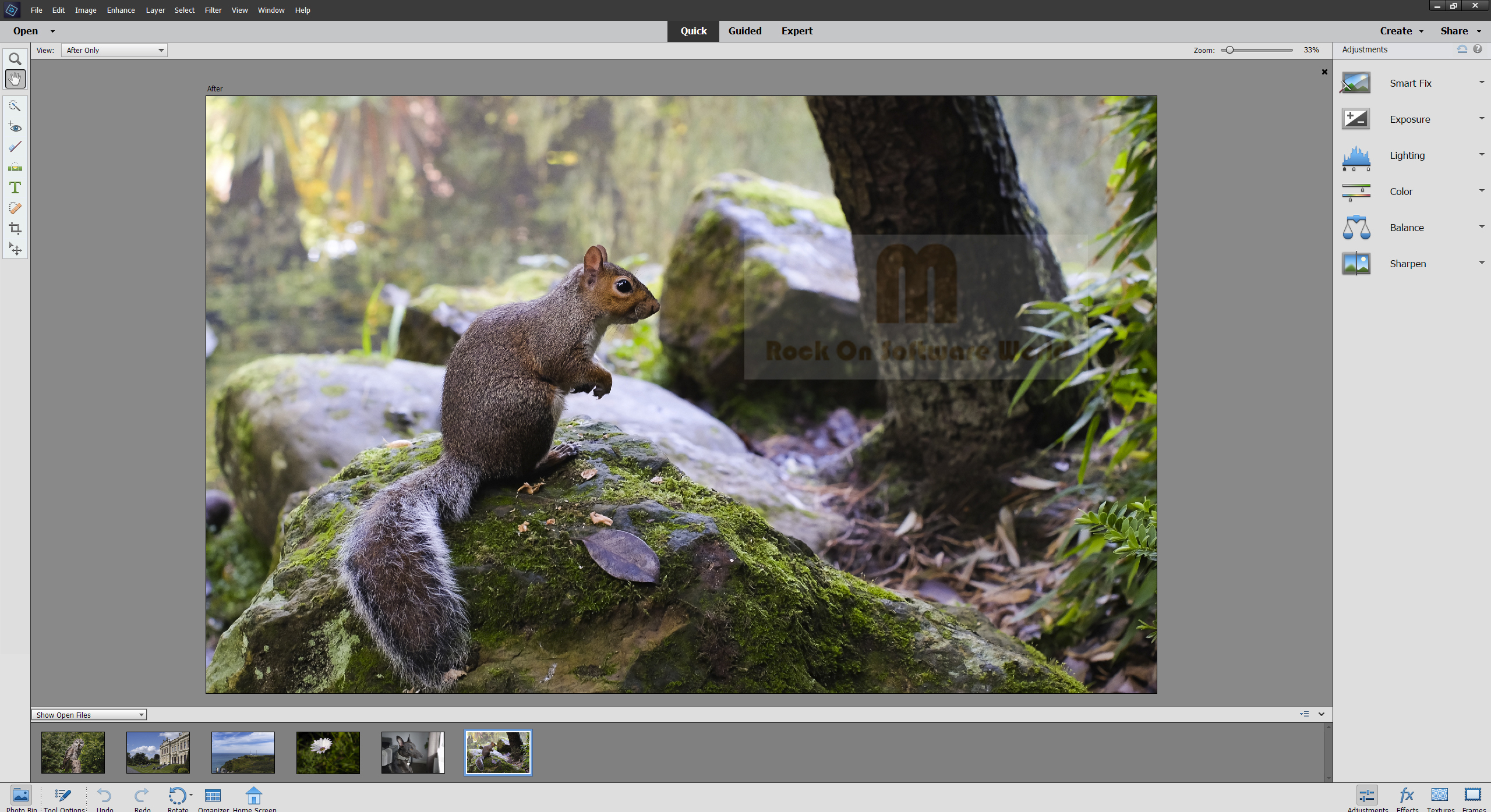 adobe photoshop elements 2019 free download full version